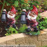 nain de jardin lumineux TOP 6 image 1 produit
