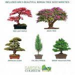 nain de jardin original TOP 4 image 1 produit