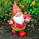 nain de jardin rigolo TOP 3 image 1 produit