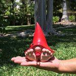 nain de jardin rouge TOP 12 image 1 produit