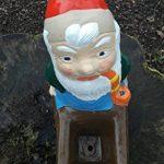Nain de jardin ~ Roy ~ avec brouette Pot de fleurs de la marque Pixieland image 4 produit