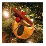 Noël 6cm bâtons de cannelle - pour décoration sapin de Noël, pot pourri, Wreaths et affiche - naturelle bâtons de cannelle, 250 Grams de la marque GemsuppliesinternationalLtd image 1 produit