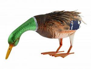 oiseaux ornement extérieur TOP 6 image 0 produit