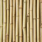 Panneau de Clôture en Bambou – 90 x 180cm de la marque Primrose image 2 produit