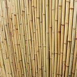 Panneau de Clôture en Bambou – 90 x 180cm de la marque Primrose image 3 produit