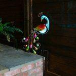 Paon Lumineux Solaire Éclairage Led à Couleur Changeante - Figurine en Verre et Métal 81cm Waterproof Pour Le Jardin (Pile Rechargeable Incluse) Waterproof de la marque Festive Lights image 1 produit