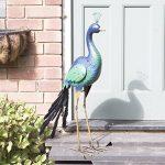 Parminder le paon de la marque Garden Collection image 4 produit