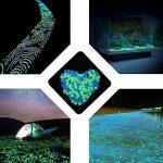 pierre de jardin TOP 9 image 4 produit