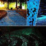 Pierre Fluorescente, 200 Pcs Galets Lumineux, Cailloux Lumineux Artificiels pour Aquarium, Chemin de Jardin et Piscine (Vert et Bleu) de la marque niceEshop image 3 produit
