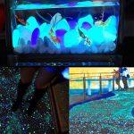 Pierre Fluorescente, 200 Pcs Galets Lumineux, Cailloux Lumineux Artificiels pour Aquarium, Chemin de Jardin et Piscine (Vert et Bleu) de la marque niceEshop image 4 produit