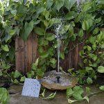 pierre pour jardin japonais TOP 11 image 1 produit