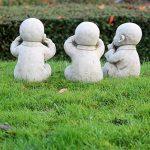 pierre pour jardin japonais TOP 5 image 1 produit