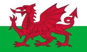 *** PROMOTION *** Drapeau Pays de Galles - 150 x 90 cm de la marque Planete Supporter image 0 produit