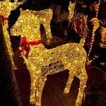 rophie Solar Guirlande lumineuse 200LED lampe solaire 22m étanche Fil cuivre Guirlande Lumineuse Intérieur Extérieur Jardin Lumières Décoration pour Noël fête mariage décoration extérieur, blanc chaud de la marque Rophie image 1 produit