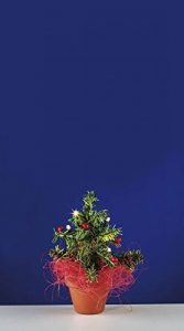 Rulke Rulke049911Sapin de Noël avec 5LED en pot de la marque Rulke image 0 produit
