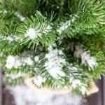 Sachet de neige artificielle - Un monde enneigé - environ 3 litres – neige intérieur / extérieur décorative – Décoration de Noël – Fausse neige pour décorer votre maison de la marque Artecsis image 2 produit