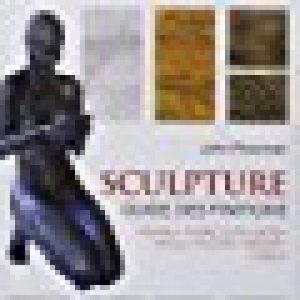Sculpture : Guide des finitions, Pierre, Terre cuite, Bois, Métal, Plâtre, Résine, Ciment de la marque John Plowman image 0 produit