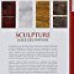 Sculpture : Guide des finitions, Pierre, Terre cuite, Bois, Métal, Plâtre, Résine, Ciment de la marque John Plowman image 1 produit