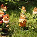 Set de mini gnomes de jardin, ensemble de mini statues des sept nains avec champignons et outils (7 pièces) de la marque WZ image 3 produit