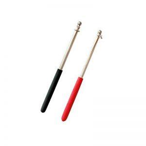 Sharplace 2pcs Télescopique en Acier Inoxydable Mât Bannière Drapeau Panneau Pliable Bâtons 1m de la marque Sharplace image 0 produit