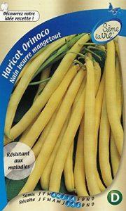 Sème la vie Graine Haricot Nain Beurre Mangetout Orinoco Vert 10 x 2,8 x 16,5 cm de la marque Sème la vie image 0 produit