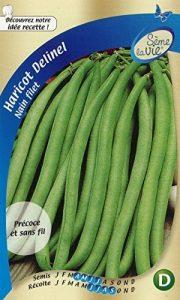 Sème la vie Graine Haricot Nain Filet Cosses Vertes Delinel Vert 10 x 2,8 x 16,5 cm de la marque Sème la vie image 0 produit