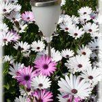 sphère inox jardin TOP 6 image 2 produit