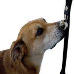 Splink Sonnette pour Chien Entraînement Cloches de Porte Formation de Dressage pr Communiquer avec Votre Chien de la marque Splink image 4 produit