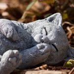 statue chat extérieur TOP 10 image 1 produit