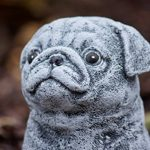Statue chien Carlin, au gel et aux intempéries-massif en pierre … de la marque Stone and Style image 1 produit