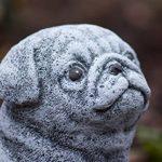 Statue chien Carlin, au gel et aux intempéries-massif en pierre … de la marque Stone and Style image 3 produit