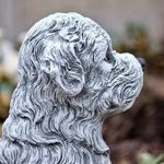 Statue chien Maltais, au gel et aux intempéries-massif en pierre … de la marque Stone and Style image 4 produit