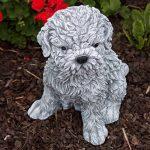 Statue chien Shih-Tzu, au gel et aux intempéries-massif en pierre … de la marque Stone and Style image 4 produit