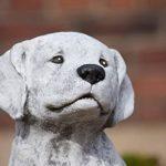 statue de chien en pierre TOP 10 image 3 produit