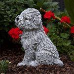 statue de chien en pierre TOP 6 image 2 produit