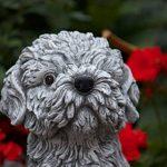statue de chien en pierre TOP 6 image 3 produit