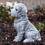 statue de chien en pierre TOP 7 image 2 produit