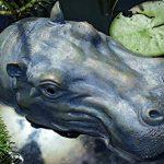 Statue flottante pour bassin ou fontaine - motif: hippopotame - L29cm de la marque Unbekannt image 1 produit