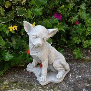 Statue Pierre Chihuahua chien en fonte, au gel de la marque gartendekoparadies.de image 0 produit