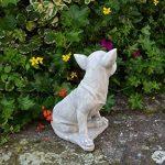 Statue Pierre Chihuahua chien en fonte, au gel de la marque gartendekoparadies.de image 1 produit