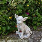 Statue Pierre Chihuahua chien en fonte, au gel de la marque gartendekoparadies.de image 2 produit