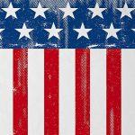 style3 USA Drapeau National T-Shirt Homme états-Unis d amérique us stars stripes de la marque style3 image 1 produit