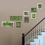 Support mural 3D Fleurs Artificielles Succulente plantes mousse sur la pierre feuilles vert herbe Fougères avec cadre forme vase Décoration Murale, 20x 55cm de la marque Artificial Flower-Wall Hanger image 1 produit