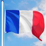 TecTake Mât de drapeau en aluminium 625 cm drapeau et corde inclus - diverses modèles - (France   no. 402618) de la marque TecTake image 1 produit