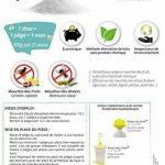 TERRA NOSTRA Phosphate Diammonique Appât mouches des oliviers Flacon 500g Utilisable en agriculture biologique de la marque TERRA NOSTRA image 2 produit