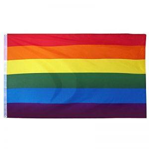 Trixes Intérieur ou extérieur LGBT Rainbow Flag Gay Pride Festival Diversity Celebration 1,5x 0,9m de la marque TRIXES image 0 produit