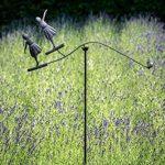 TS Gardendeco Éolienne Ballerine Iron, revêtu de poudre, Noir, 76x133cm de la marque TS image 2 produit
