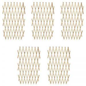 vidaXL 5x Treillis en Bois Extensibles Ensemble de Treillis Bordure de Jardin de la marque vidaXL image 0 produit