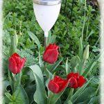 Watt & Home 401 40 Tulipa Arc-en-Ciel Éclairage Solaire Polyéthylène/Inox de la marque Watt & Home image 3 produit