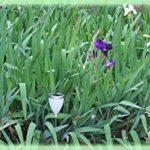 Watt & Home 401 40 Tulipa Arc-en-Ciel Éclairage Solaire Polyéthylène/Inox de la marque Watt & Home image 4 produit